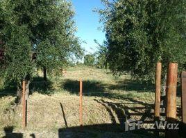 N/A Terreno (Parcela) en venta en , Mendoza LOS DOS ALAMOS 2800 al 2800, San Rafael, Mendoza