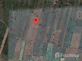 N/A Property for sale in Bo Rang, Phetchabun 13 Rai Teak Farm For Sale
