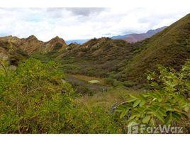 N/A Terreno (Parcela) en venta en Vilcabamba (Victoria), Loja 3 Hectares close to Vilcabamba, Vilcabamba, Loja