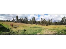 3 Habitaciones Casa en venta en Chiquintad, Azuay Chiquintad, Azuay, Address available on request