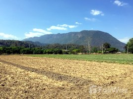 N/A Land for sale in Chiang Dao, Chiang Mai Stunning Mountain Views Prime Location Chiang Dao