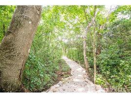 N/A Land for sale in , Guanacaste Finca del Cusuco: Hills of Buena Vista, Playa Samara, Guanacaste