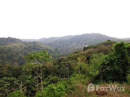 San Jose Valley of the Horses 1 & 2: Mini eco-tour property complete with waterfalls, Barú, San José N/A 土地 售