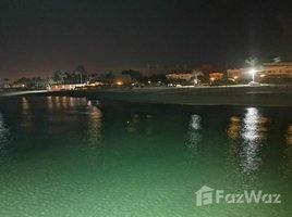 Suez Al Manal Al Manal 2 2 卧室 顶层公寓 售