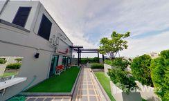 Photos 1 of the Communal Garden Area at The Ace Ekamai