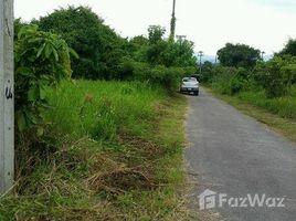 N/A Land for sale in Huai Sai, Chiang Mai Land in Tambon Huaysai