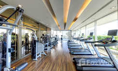 Photos 3 of the Communal Gym at Ivy Thonglor