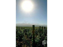 N/A Terreno (Parcela) en venta en , Mendoza Ruta 7 0 al 100, Luján de Cuyo, Mendoza