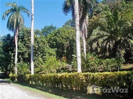 N/A Terreno (Parcela) en venta en , Puntarenas Las Alamedas Residential Lot, Golfito, Puntarenas