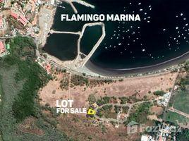 Guanacaste Playa Flamingo N/A 土地 售