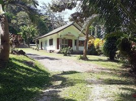 N/A Property for sale in Sakhu, Phuket Hillside 5.5 Rai Land With House Near Naithon Beach