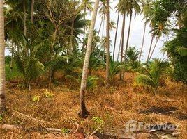 春蓬 Bang Nam Chuet Beachfront Land for Sale at Lang Suan N/A 土地 售