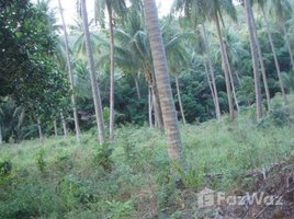 N/A Property for sale in Maenam, Koh Samui Nature View Land For Sale At Mae Nam