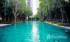 Photos 2 of the Communal Pool at Vtara Sukhumvit 36