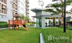 Photos 1 of the Communal Garden Area at Supalai Park Ekkamai-Thonglor
