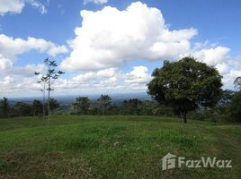Limon Huge Property for Sale in Limon, with 3 independent wooden houses and spectacular views!, Siquirres, Limón N/A 土地 售