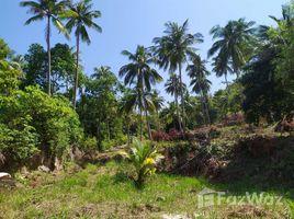 N/A Property for sale in Ko Pha-Ngan, Koh Samui Fantastic Piece of South West Facing Sea View Land in Ko Pha-Ngan