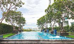 Photos 1 of the Communal Pool at Supalai Monte 2
