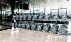 Photos 3 of the Communal Gym at The Tree Interchange