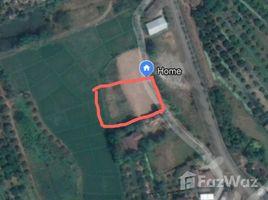 N/A Property for sale in Khun Khong, Chiang Mai Land For Sale At Khun Khong