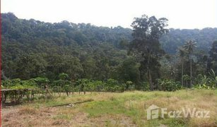 N/A Property for sale in Pulau Betong, Penang