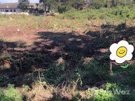 N/A Land for sale in Ban Waen, Chiang Mai Moo Baan Tarndong