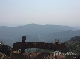 N/A Land for sale in Pa Pae, Chiang Mai Land at Doi-Mont Ngo