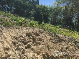 N/A Land for sale in Karon, Phuket Land 3 Rai for Sale in Kalim, Phuket