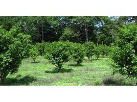 N/A Land for sale in , Guanacaste Finca Carmen Sánchez: Income Producing River-Front Teak & Citrus Farm, Mansion, Guanacaste
