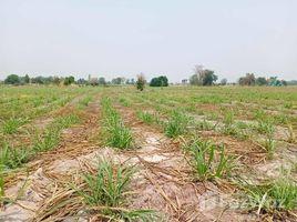 N/A Land for sale in Nong Krathum, Suphan Buri 103 Rai Land close to Main Road in Doem Bang Nang Buat