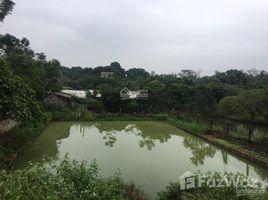 N/A Land for sale in Lien Son, Hoa Binh Cơ hội sở hữu ngay 4.448m2 đất làm nghỉ dưỡng, tại xã Liên Sơn, Lương Sơn, Hòa Bình