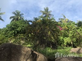 N/A Land for sale in Ko Tao, Koh Samui 14 Rai Land For Sale In Koh Tao