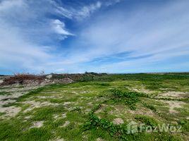 N/A Land for sale in Laem Phak Bia, Phetchaburi Beachfront Land For Sale in Phetchaburi