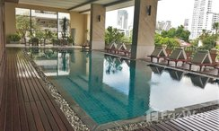 Photos 2 of the Communal Pool at Prime Mansion Sukhumvit 31