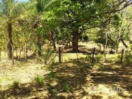 Guanacaste FINCA ALCAR: Riverfront, Mountain and Countryside Agricultural Land For Sale in Cañas, Cañas, Guanacaste N/A 土地 售