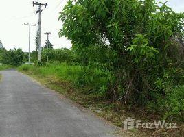 N/A Property for sale in Huai Sai, Chiang Mai Land in Tambon Huaysai