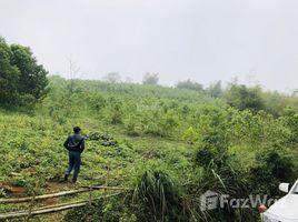N/A Land for sale in Truong Son, Hoa Binh Gia đình cần bán gấp 3.6ha đất rừng sản xuất tại Lương Sơn