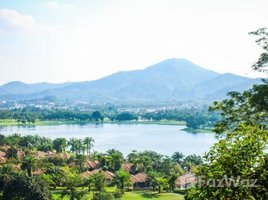 N/A Land for sale in Kathu, Phuket Beautiful Large Land For Sale