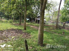 Kandal Phum Thum Land for Sale in Kien Svay N/A 土地 售