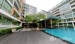 Photos 3 of the Communal Pool at Ficus Lane