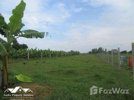 Battambang Chheu Teal Land For Sale in Kandal N/A 房产 售