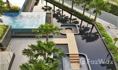 Photos 3 of the Communal Pool at The Trust Condo South Pattaya