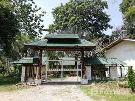 清莱 Pa O Don Chai 4 Bedroom House In 11 Rai Land For Sale In Chiang Rai 4 卧室 房产 租