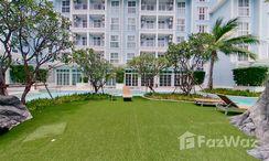 Photos 1 of the Communal Garden Area at Grand Florida