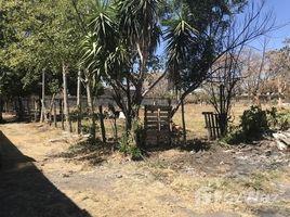 Alajuela Countryside Agricultural Land For Sale in San Antonio, San Antonio, Alajuela N/A 土地 售