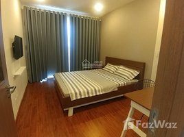 海防市 Lach Tray SHP Plaza 2 卧室 公寓 租