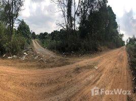 Kampong Speu Traeng Trayueng Mango Farm and Land For Sale Kompong Speu N/A 房产 售