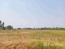 N/A Land for sale in Den Yai, Chai Nat 21 Rai Land in Hankha, Chai Nat for Sale