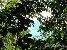 攀牙 Ko Yao Noi 5 Rai of land in forests of Yao Noi N/A 土地 售