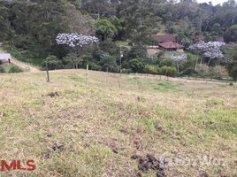 N/A Terreno (Parcela) en venta en , Antioquia #, Rionegro, Antioqu�a